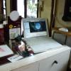 VNCでWindowsからMacをリモートコントロールする