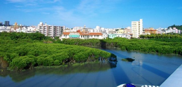 沖縄の「漫湖」にまつわるちょっと気になるお話