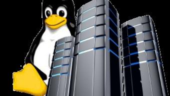 LinuxServer で突然メールの送受信ができなくなった原因