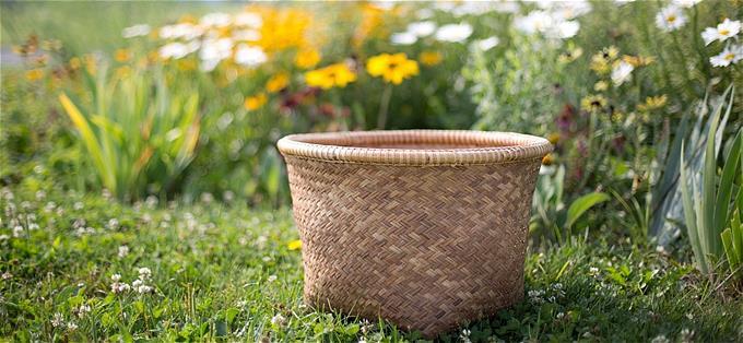 s-basket-554094_1280[1]